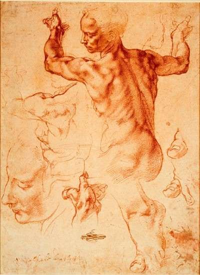 michelangelo-sibyl-drawing-16